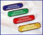 LEARNING AMBASSADOR - BAR Lapel Badge